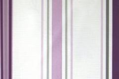 PP321500-300x300