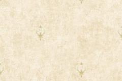 VN720301-300x300