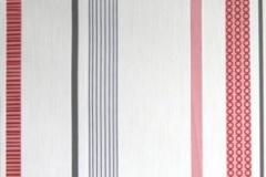 PP321102-300x300